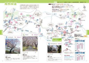 尾根緑道 桜まつり